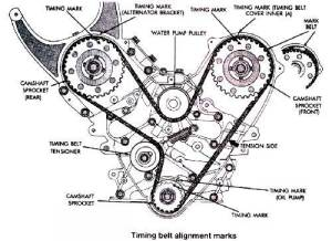 Timing Belt Diagram For Toyota Celica 1991 Engine 4AFE