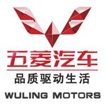 Auto-sales-statistics-China-Wuling-logo