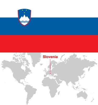 Slovenia-car-sales-statistics