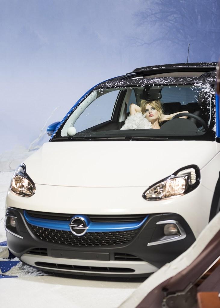 Opel Georgia May Jagger Grump Cat Calendar 2017