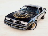 "Pontiac Firebird ""Screaming Hawk"""