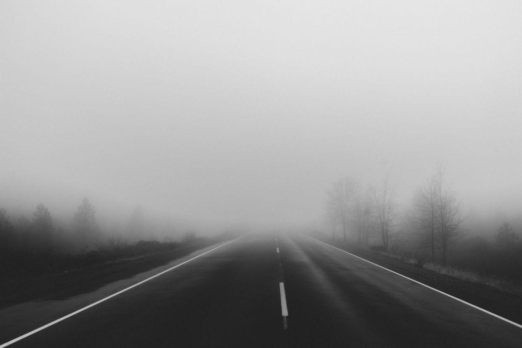carsie.net - fog