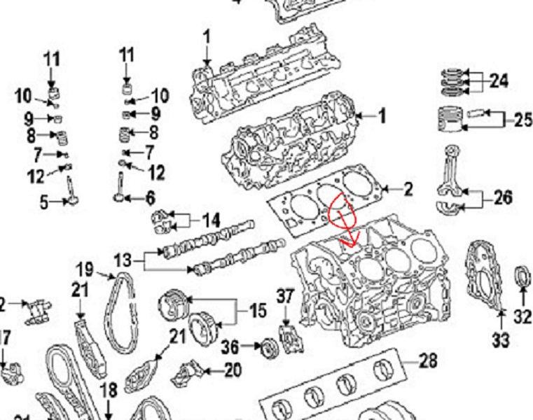 toyota camry oil pump gasket