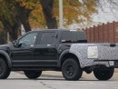 Best 2019 Raptor Colours Release date and Specs
