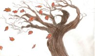 Dandy Gray CC - árvore outono