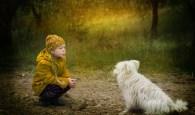 Cuidar e amar um cachorro de estimação aumenta sua qualidade de vida.
