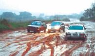 lama carros