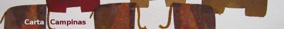 julia cardia banner 04