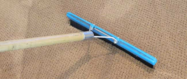 The Benefits of Carpet Grooming   Carter s Carpet Restoration