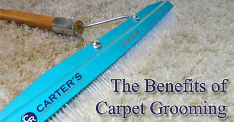 The Benefits of Carpet Grooming   Carter s Carpet Restoration carpet grooming  carpet care  carpet cleaning