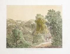 Gravure ancienne - Un Vallon du Boudzareah