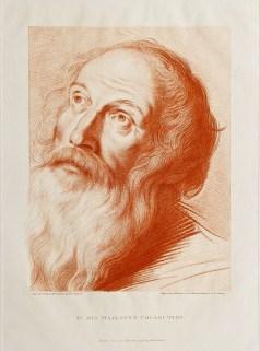 Portrait - Annibal Carracci
