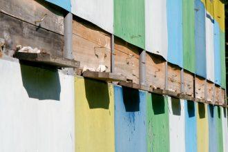 Stupi de albine în Tismana / Creasta Oslei, Oslea, Muntii Valcan, Gorj, Hunedoara