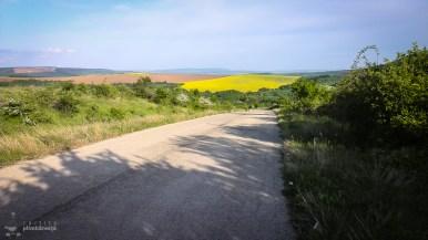 bicicleta-bulgaria-orlova-chuka-katselovo-sadina-cherven_42
