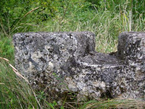 """Scobitura in """"coada de randunica"""" tipica pentru murus dacicus - Cetatea dacica de la Capalna"""