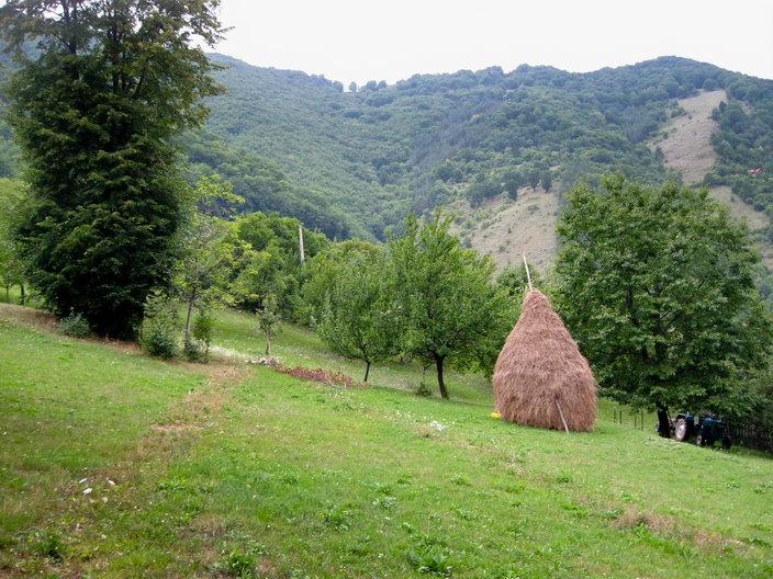 Poteca urca prin curtile oamenilor - Cetatea dacica de la Capalna