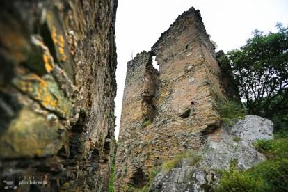 Castelul din Carpati sau Cetatea Colt_22