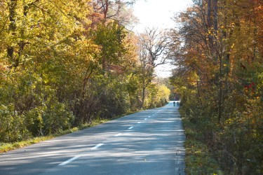 Cinci trasee faine de bicicleta in apropiere de Bucuresti 38