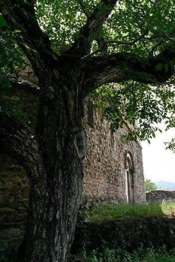 Biserica - Cetatea Cisnadioara