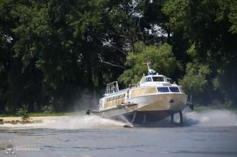 Delta Dunariii rapida