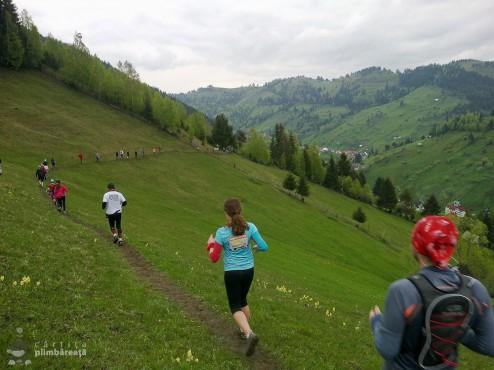 EcoMarathon - experienta forte la primul maraton montan_04