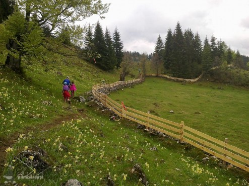 EcoMarathon - experienta forte la primul maraton montan_13