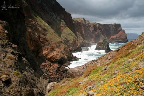 Asta da peisaj - Madeira - Peninsula Sao Laurenco
