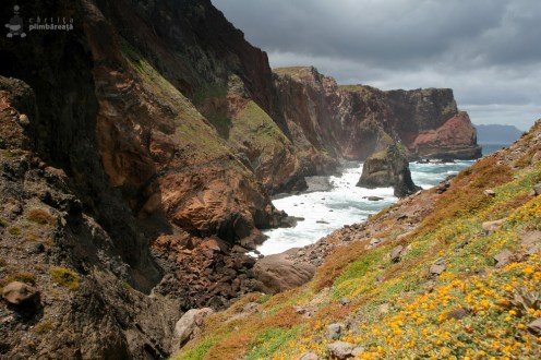 Asta da peisaj - Madeira - Peninsula Sao Laurenco_15
