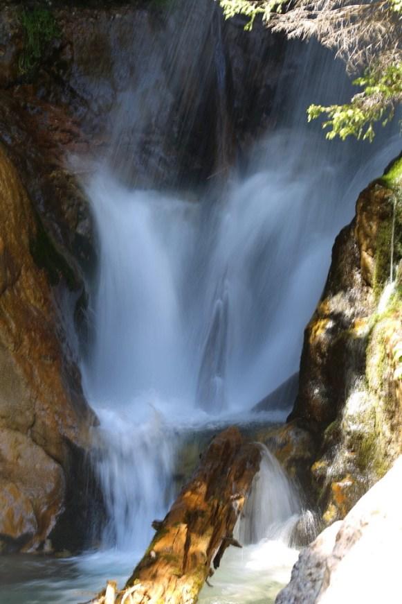 Padina si Valea Horoabei - Bucegi - iulie 2016_04