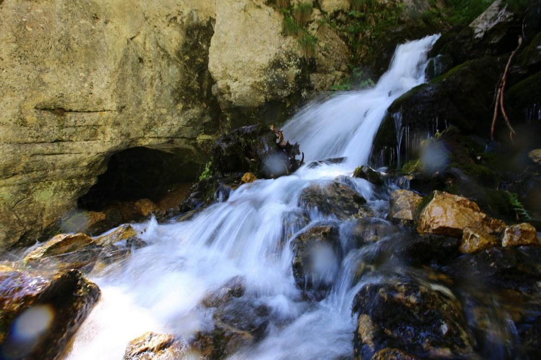 Padina si Valea Horoabei - Bucegi - iulie 2016_10