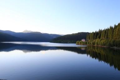 Padina si Valea Horoabei - Bucegi - iulie 2016_70