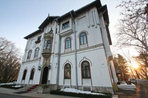 Palatul Stirbei - Buftea