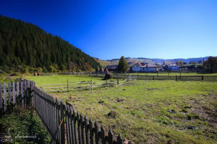 Paste in Bucovina - Ciocanesti_32