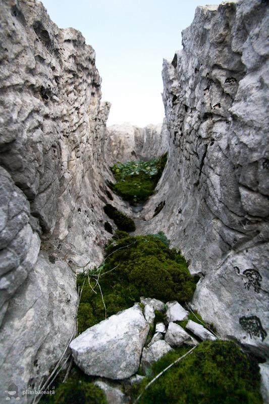 Podul-lui-Dumnezeu-si-campul-de-lapiezuri-Ponoarele-Mehedinti_15
