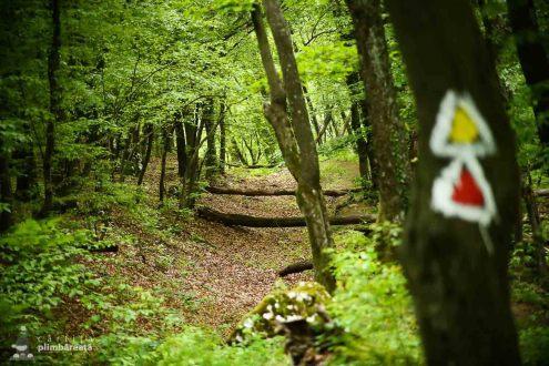 Traseu Ciucarul Mic - Defileul Dunarii_25