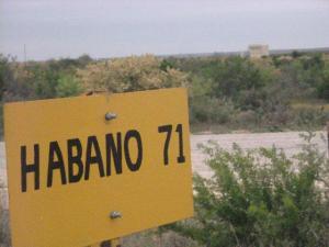 Habano 71