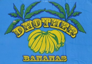Dhother