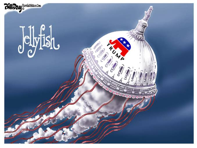 Spineless Jellyfish by Bill Day, FloridaPolitics.com