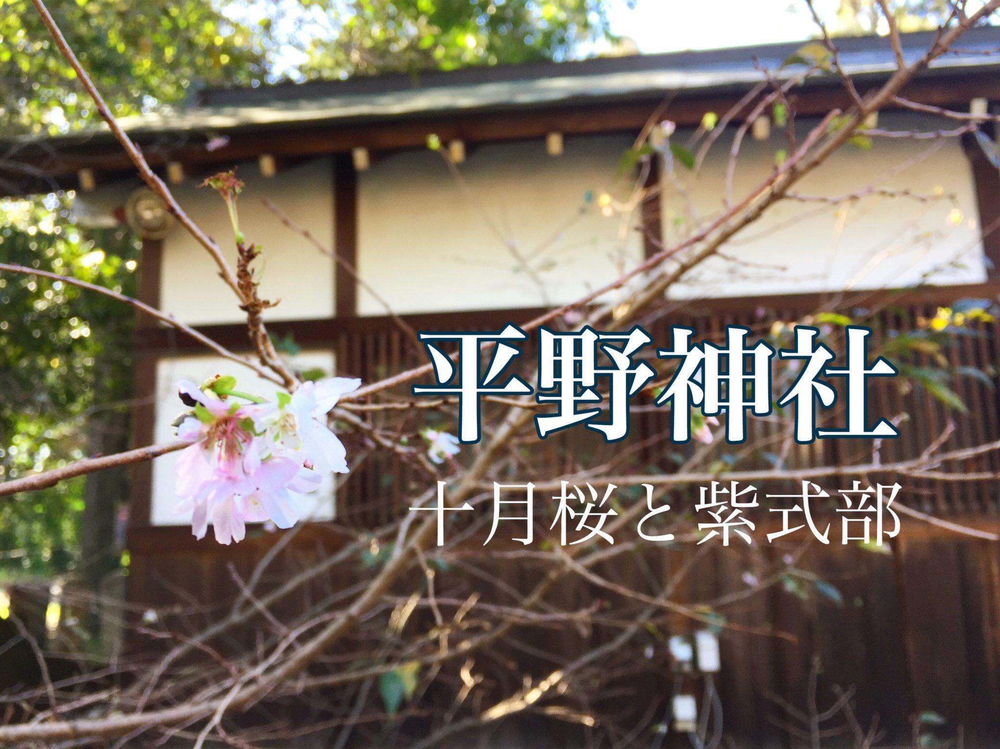 秋の平野神社の記事のアイキャッチ画像