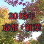 2018年の京都の紅葉の記事のアイキャッチ画像
