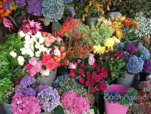 Market flowers Portobello Road