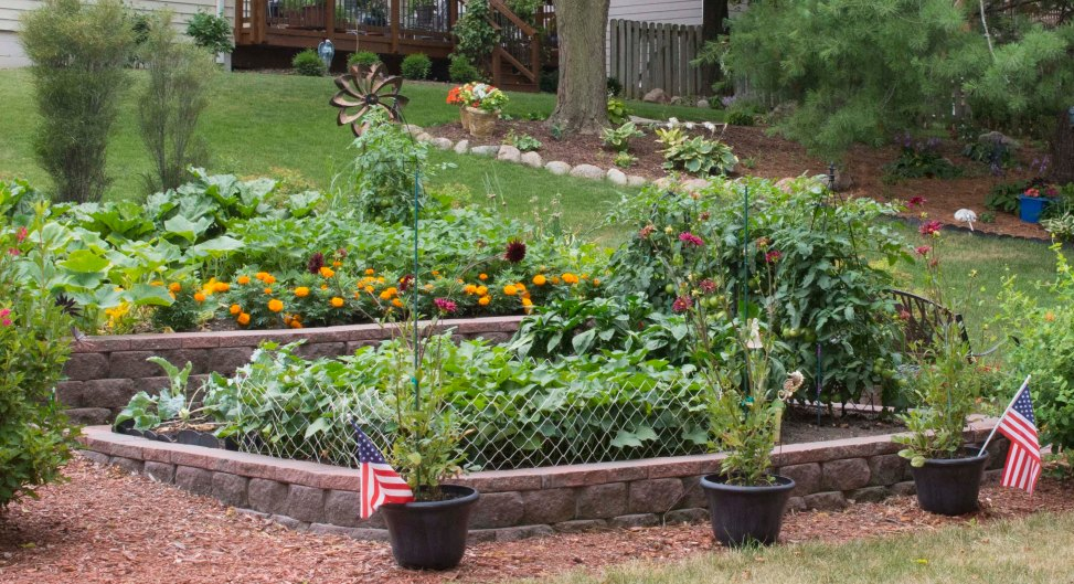Garden in raised beds