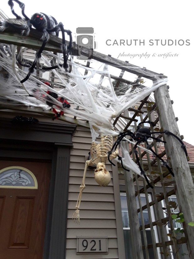 Spiders and hanging skeleton
