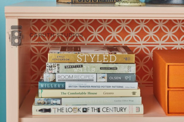 Stenciled bookcase panel