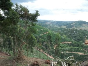 Fazenda Pedra Redonda, Brazil