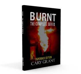 Burnt Paperback Edition 3D