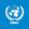«Les assaillants lourdement équipés», l'Onu parle d'une attaque «préparée et organisée» contre une base de la Monusco en RDC