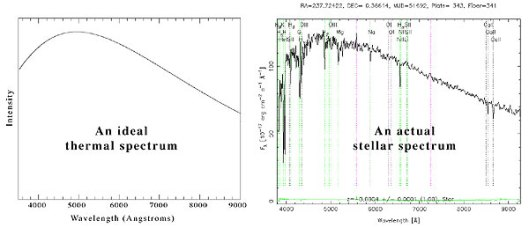 An ideal thermal spectrum is a smooth curve; an actual star's spectrum has emission/absorption lines and noise.