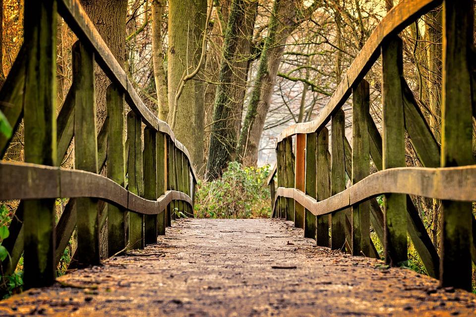 Un puente entre Israel y Polonia
