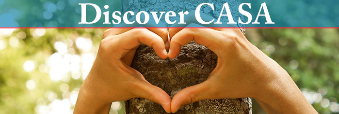 discover-casa-2